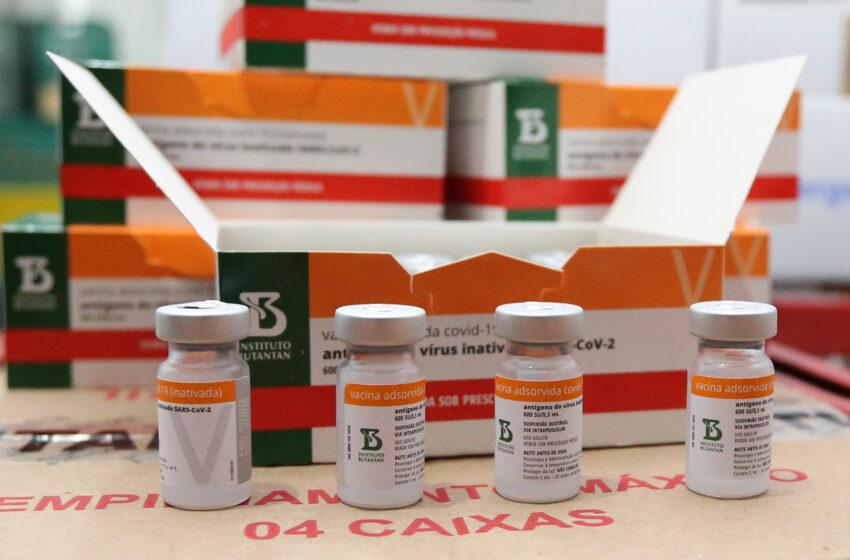 Paraná distribui novo lote e começa a vacinar idosos com mais de 75 anos
