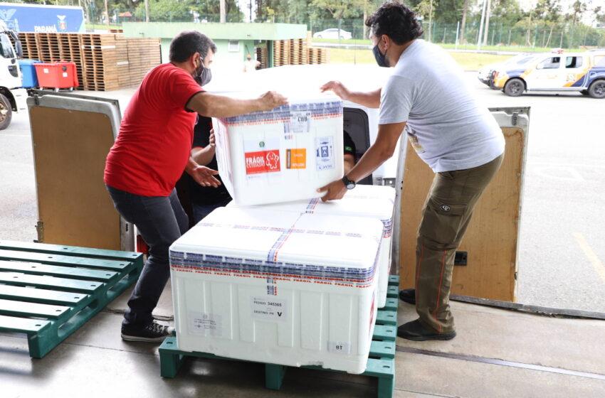 Paraná recebeu neste sábado mais 240,4 mil doses da vacina contra a Covid-19