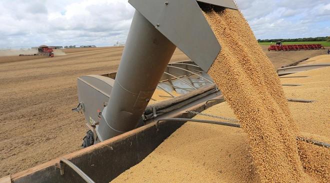 PM prende suspeitos de furto de soja em Arapuã