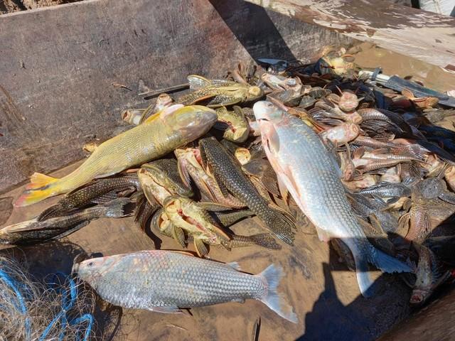 Três são presos suspeitos de pesca ilegal, no Rio Ivaí