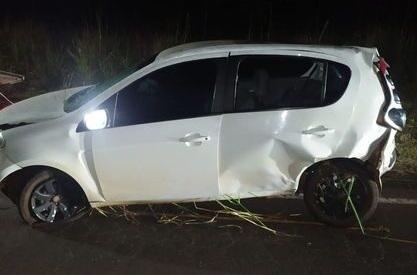 Motorista de Cruzmaltina capota carro após atropelar javalis na PR-445