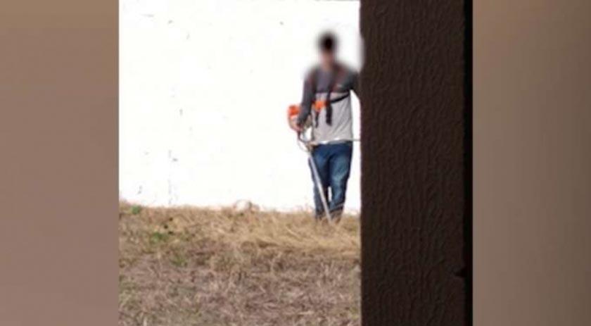 Alunos são colocados para roçar lote de escola no Paraná