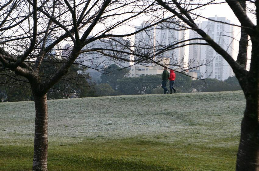 Paraná registra madrugada mais fria do ano; 24 municípios tiveram temperaturas negativas