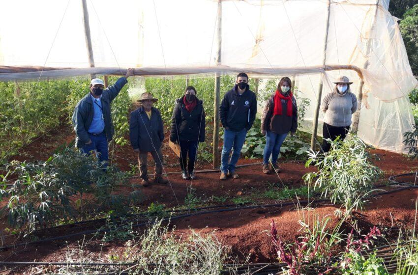 Departamento de Agricultura de Ivaiporã inicia projeto de Produção de Orgânico