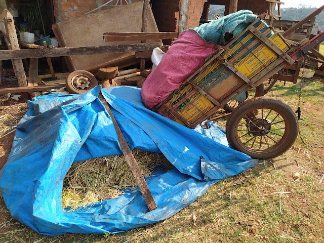 PC recupera aveia furtada de propriedade rural em Faxinal