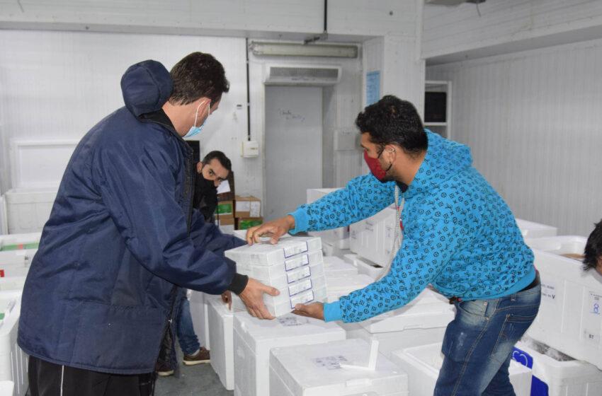 Chegam ao Paraná 107.640 doses de imunizantes contra a Covid-19