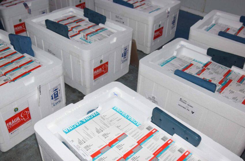 Estado recebe mais 232.250 vacinas contra a Covid-19; lote completa remessa de 435.290 doses