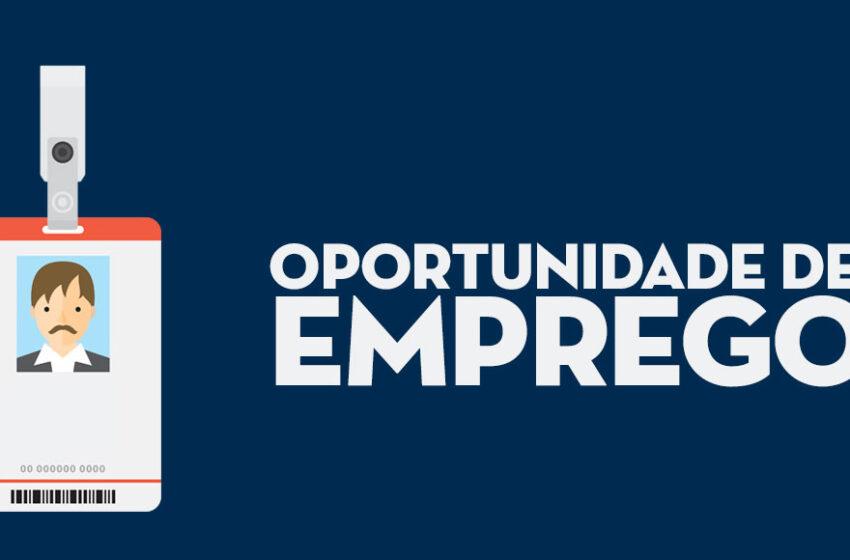 OPORTUNIDADE – Oito vagas de emprego disponíveis em Rio Branco do Ivaí