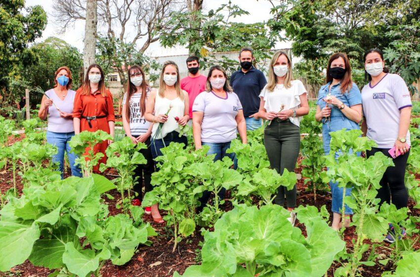 Primeiras-damas visitam horta solidária de Apucarana