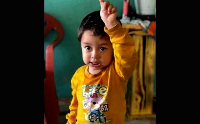 Menino de 2 anos morre após ser picada por animal peçonhento