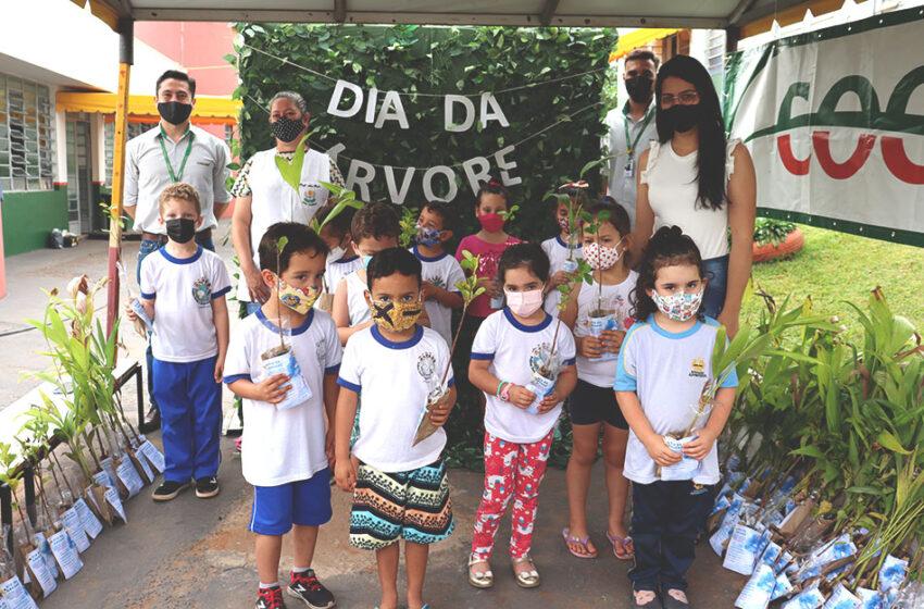 Cocari celebra o Dia da Árvore com ação em CMEI de Cambira