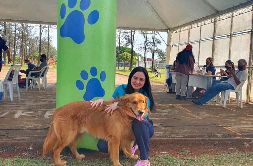 Programa CastraPet atende 209 animais em Arapongas