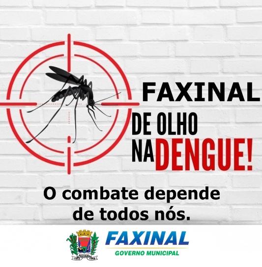 FAXINAL – De olho na Dengue