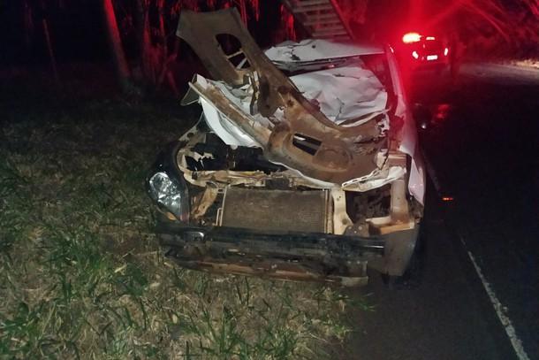 Homem fica ferido após colidir veículo contra uma vaca na região
