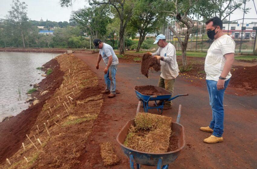 Setor de Serviços Urbanos da Prefeitura de Ivaiporã planta grama no Parque Ambiental Jardim Botânico