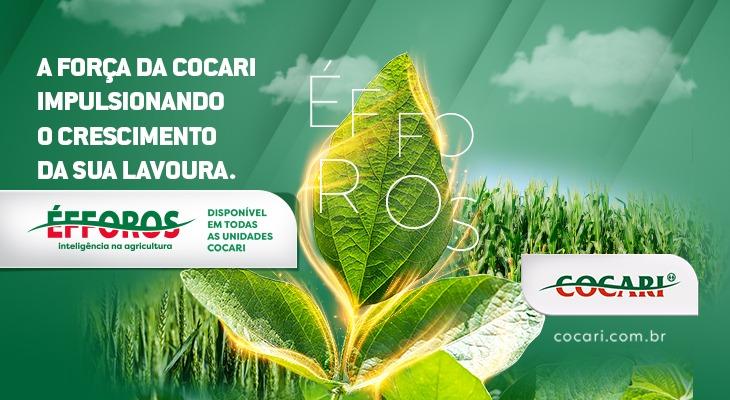 COCARI: Cooperativa lança linha de produtos de Nutrição Vegetal e Tecnologia de Aplicação